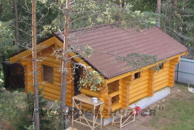 фото бани крыши