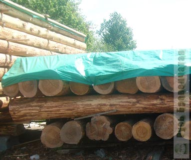Preparation and storage of winter wood