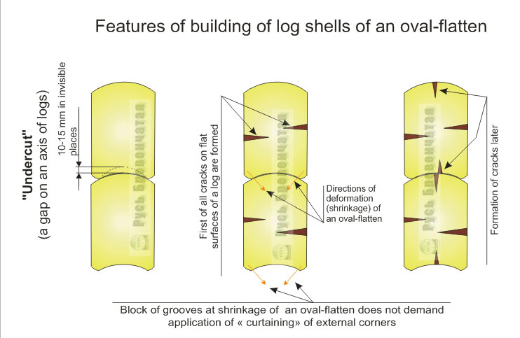 Features of oval-flatten shrinkages