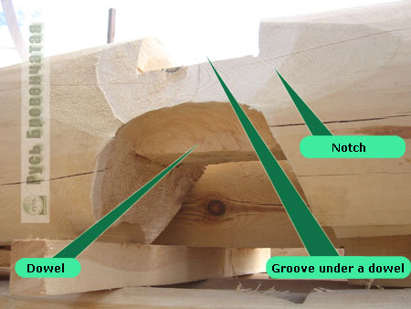 Dowel close up - the Canadian technology